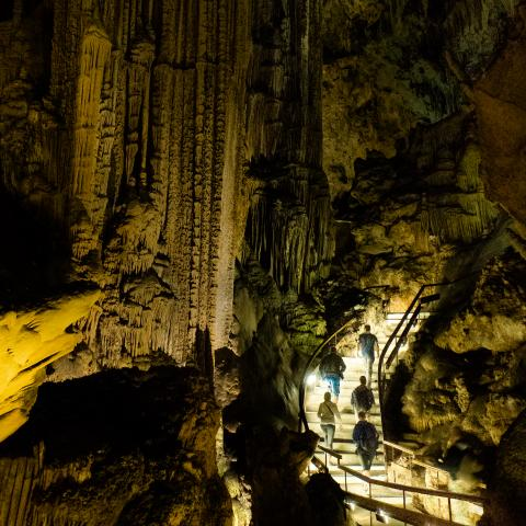 Image The Nerja Cave
